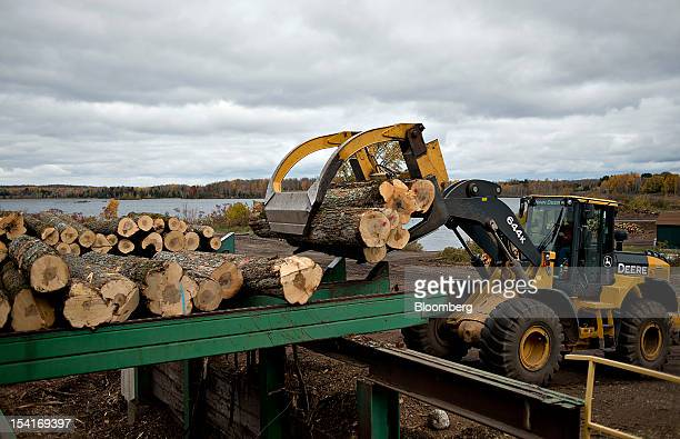 An employee uses a John Deere Co 644K wheel loader to drop a load of maple logs for processing at the Nicolet Hardwoods Corp lumber mill in Laona...