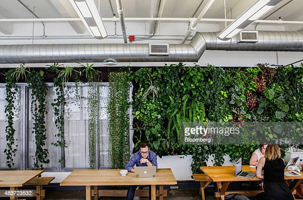 An employee uses an Apple Inc laptop computer during a lunch break at Etsy Inc headquarters in the Brooklyn borough of New York US on Tuesday Aug 11...