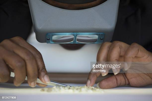 An employee uses magnifiers and tweezers to sort rough diamonds at the Namibian Diamond Trading Co diamond processing and valuation center a joint...