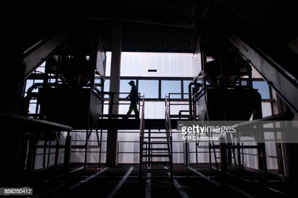 An employee walks on a gateway in 'Agro Sevilla' olive manufacturing company in La Roda de Andalucia on September 29 2017 / AFP PHOTO / JORGE GUERRERO