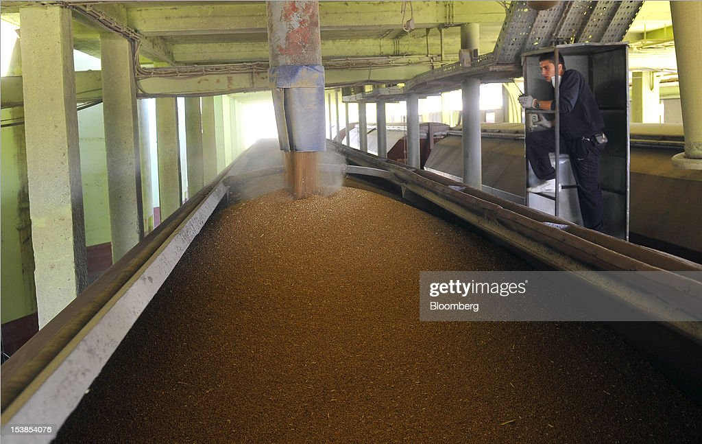 An employee watches as wheat grain is loaded into a railway wagon before shipping at Granexport AD port, part of MK Group, on the Danube river in Pancevo, Serbia, on Tuesday, Oct. 9, 2012. Goods volumes on Europe's longest river after the Volga are 80 percent lower than on the Rhine, the region's busiest waterway, according to EU figures. Photographer: Oliver Bunic/Bloomberg via Getty Images
