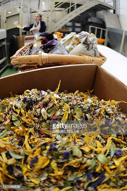 An employee works on a potpourri mix in the laboratory of the Farmacia di Santa Maria Novella on April 4 2012 in Florence The pharmacy of Santa Maria...