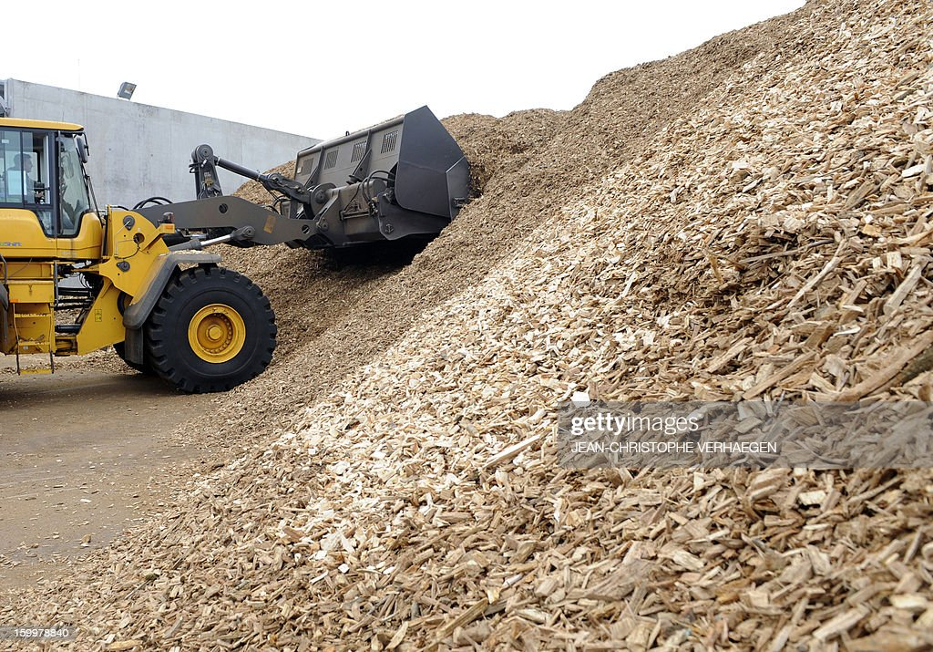An employee works on an excavator at storing fuel composed of wood chips to be used for the UEM (Usine d'Electricité de Metz) biomass plant in Metz, eastern France, on January 24, 2013. This thermal power plant, coal-fired, gas and biomass, provides electricity and heat to Metz and to the surrounding towns. AFP PHOTO / JEAN-CHRISTOPHE VERHAEGEN