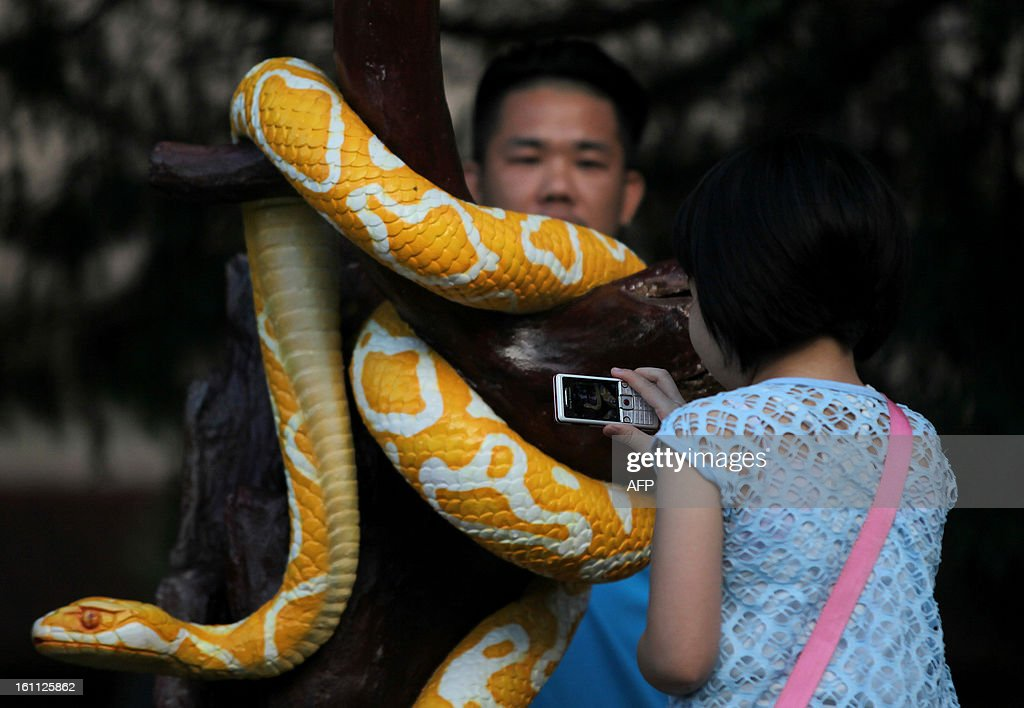 An ethnic Chinese girl takes pictures of a snake statue ahead of Chinese New Year celebrations at the Thean Hou Temple in Kuala Lumpur on February 9, 2013. Chinese New Year which is also known as Lunar Year falls on February 10.