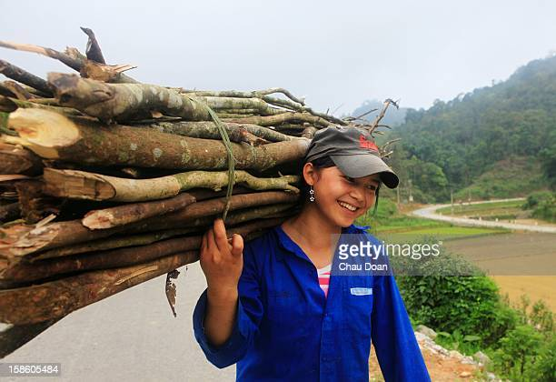 An ethnic minority Nung girl carries firewood in Quang Ba district Ha Giang province