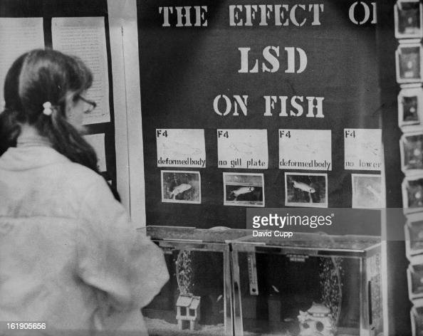 APR 12 1972 APR 16 1972 An exhibit on the effect of LSD on fish submitted by Randy S McMullen 10th grader at Monte Vista High School Monte Vista Colo...