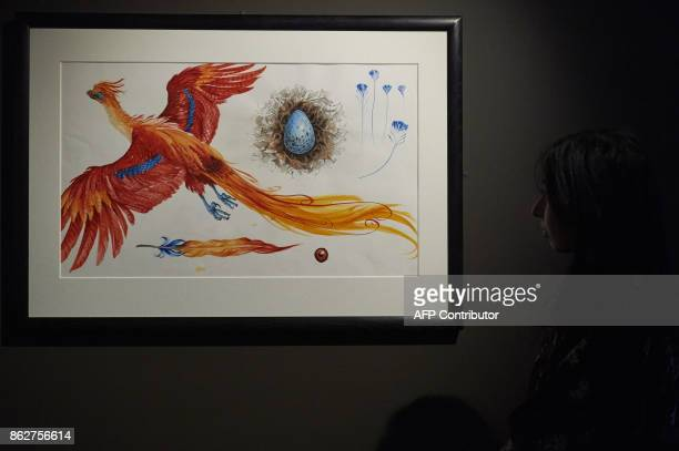 An exhibition curator stands next to an illustration of Fawkes the Phoenix during a preview of 'Harry Potter A History of Magic' exhibition at the...