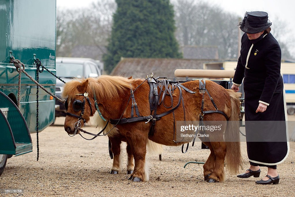 An exhibitor prepares her horse for the parade on April 1, 2013 in Ardingly, United Kingdom. The Parade is an amalgamation of two traditional parades, the London Cart Horse Parade, founded in 1885 and the London Van Horse Parade, founded in 1904. The objectives of these parades was to improve the general condition and treatment of London's working horses and to encourage drivers to take a humane interest in the welfare of their animals. There is a wide variety of breeds of animal ranging from donkeys to Dutch Friesians and Gelderlander's, to magnificent heavy horses.