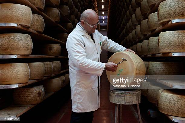 An expert check the quality of Grana Padano in aging warehouses of Parmesan and Grana Padano on January 01 2012 in Fiorenzuola d'Arda Italy The aging...