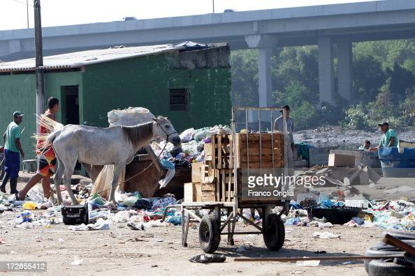 An horse pastures in the rubbish at the favela Salsa e Merengue at the North Zone favela complex of Mare' on June 12 2013 in Rio de Janeiro Brazil...