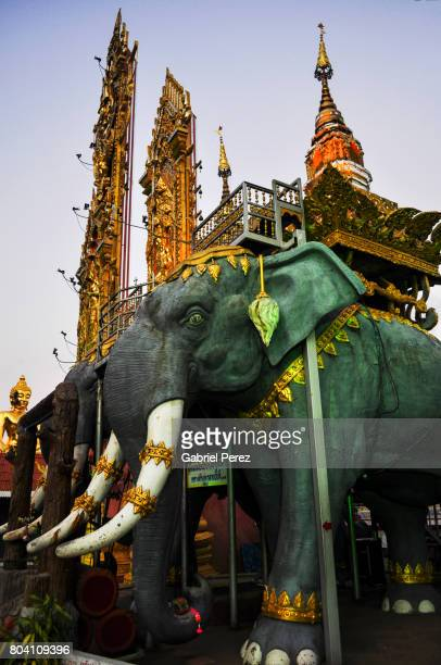 An Iconic Asian Elephant
