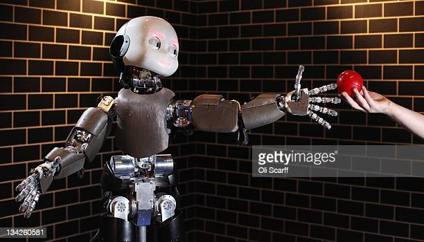 An iCub robot built by the Italian Institute of Technology tracks and grabs a red ball in the Robotville exhibition at the Science Museum on November...