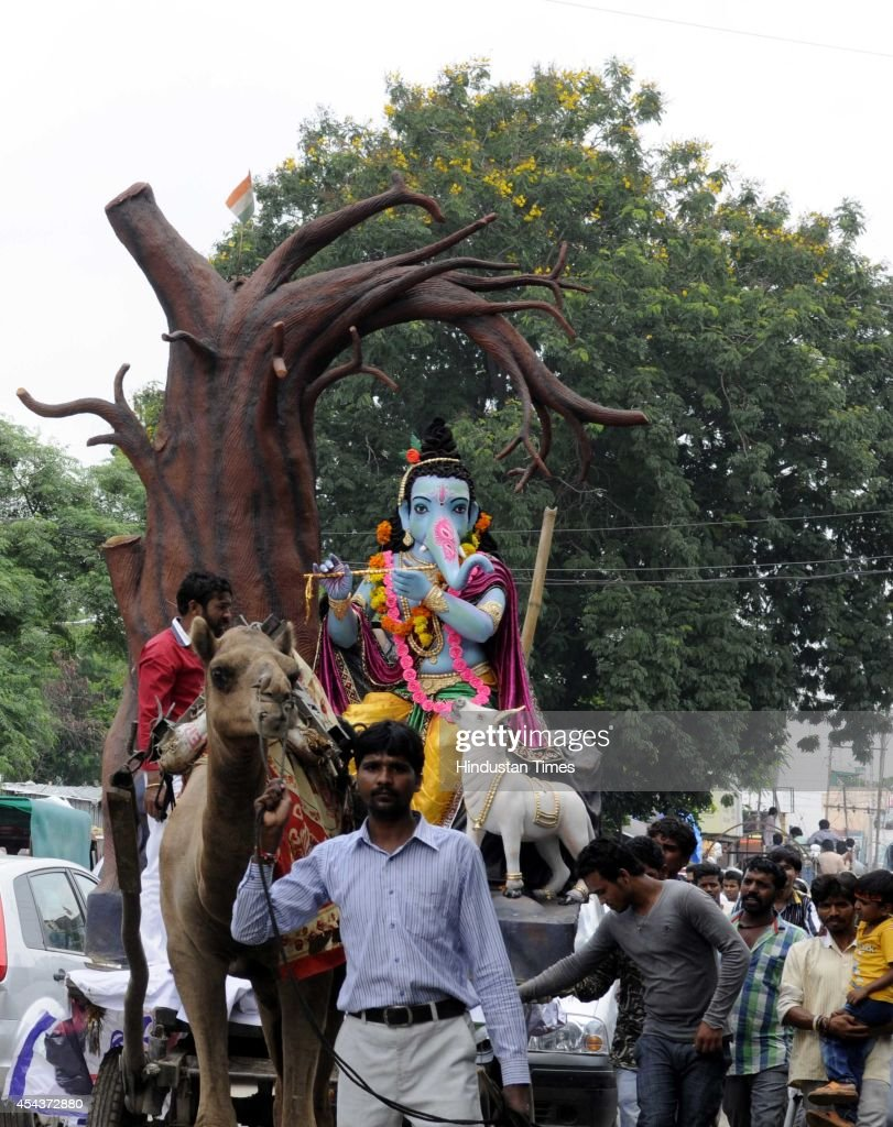 An idol of Ganesha being carried on camel cart near Bengali Square on the occasion of Ganesha Chathurthi festival on August 29, 2014 in Indore, India. The ten-day long Ganesh festival kicked off with zeal and fervour across Maharashtra with lakhs of devotees queueing up outside temples to offer prayers to the elephant-headed deity. The district administration has put a ban of use of idols made from plaster of Paris with a view to prevent pollution of rivers and ponds.
