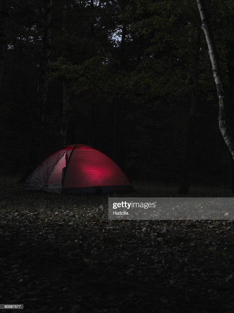An illuminated red tent in a forest at night