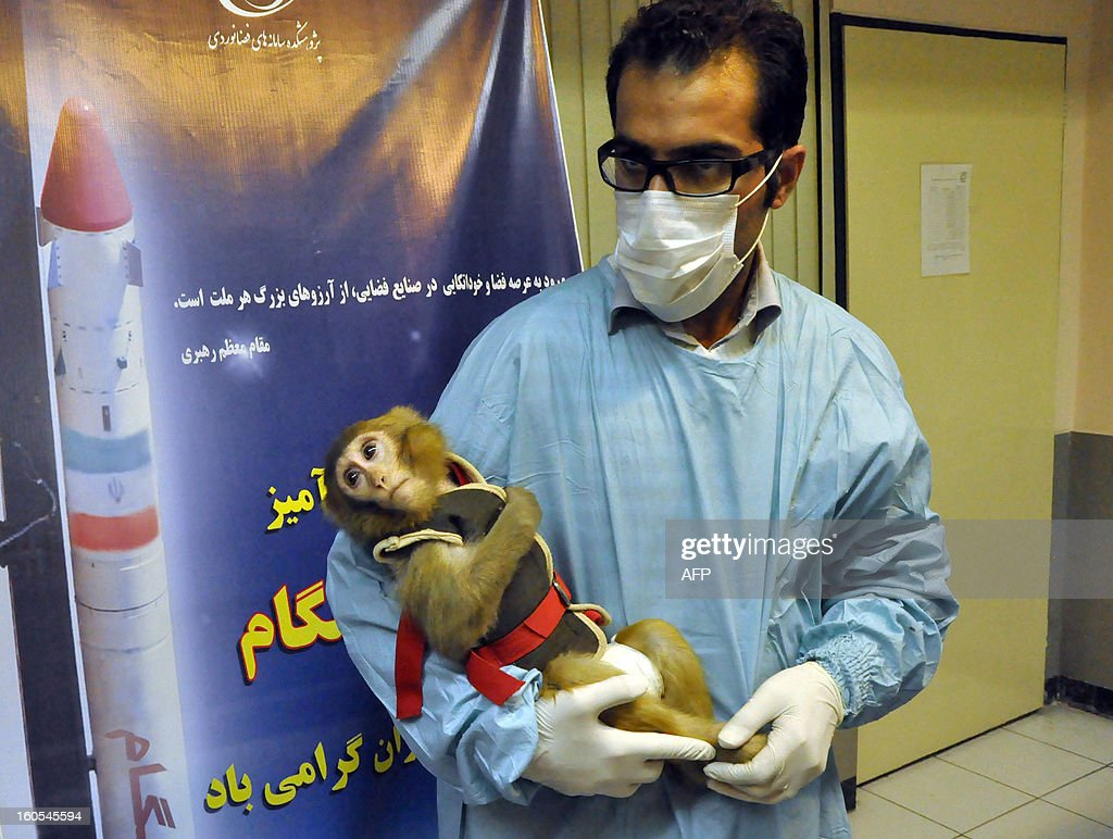 An image obtained from Iranian Students' News Agency (ISNA), taken on January 30, 2013, shows a man holding a monkey during a press conference in Tehran after the return of the capsule carrying a monkey was sent above the Earth's atmosphere on January 28, 2013. The announcement by Iran that it successfully sent a monkey above the Earth's atmosphere, has provoked questions on social media sites pointing out the differences between the official images of the primate before the launch and when it returned to earth.