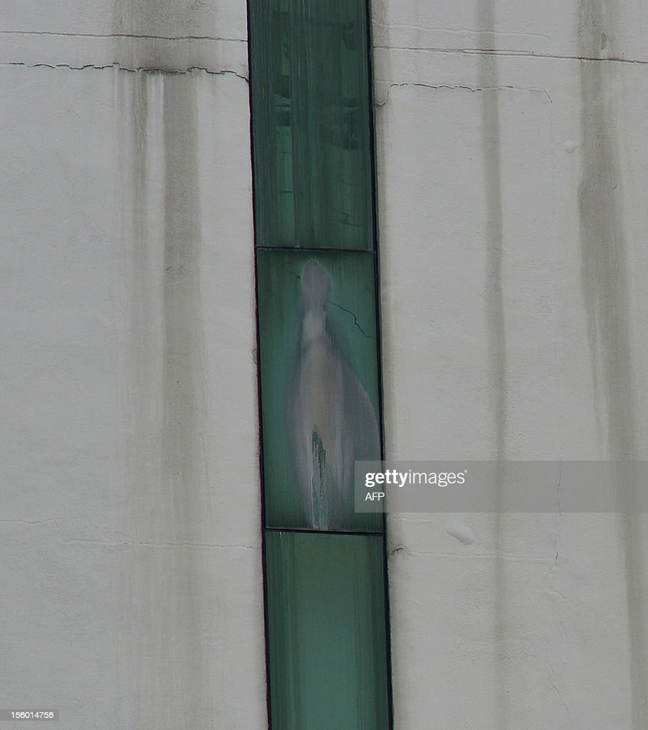 An image said to be the Virgin Mary appears on the window of a Malaysian hospital in Subang outside Kuala Lumpur on November 11, 2012. Pictures of the image have gone viral among local Christians on Facebook this week and large crowds have been seen at the Sime Darby Medical Centre just outside of Kuala Lumpur.