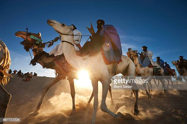 An impoverished Tuareg man leads one of the last salt camel caravans down from the saltmines on January 15 Taoudenni in the north of Mali He and his...