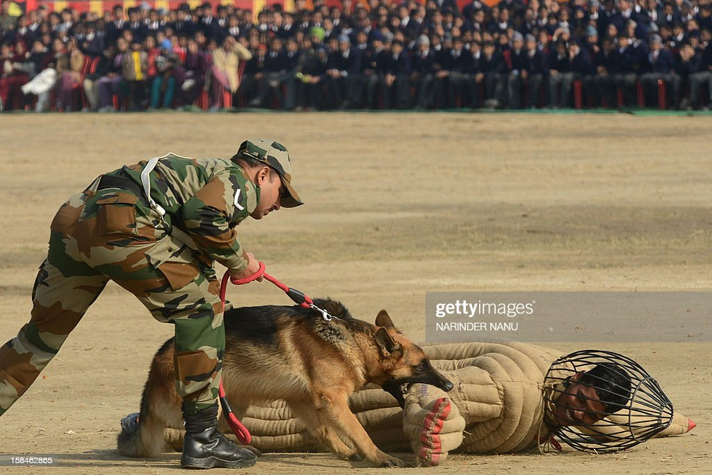 An Indian Army K9 unit performs a demonstration drill during an Army Mela (fair) and exhibition at Khasa, some 15 kms from Amritsar, on December 17, 2012. The Army Mela (fair ), organised by the Vajra Corps, displayed weapons, tanks, aircraft and military equipment to students and civilian visitors of the event. AFP PHOTO/ NARINDER NANU