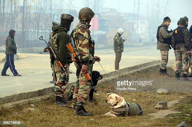 An Indian army soldier along with sniffer dog prepares to diffuse the Improvise Electronic Device in Narbal on the outskirts of Srinagar the summer...