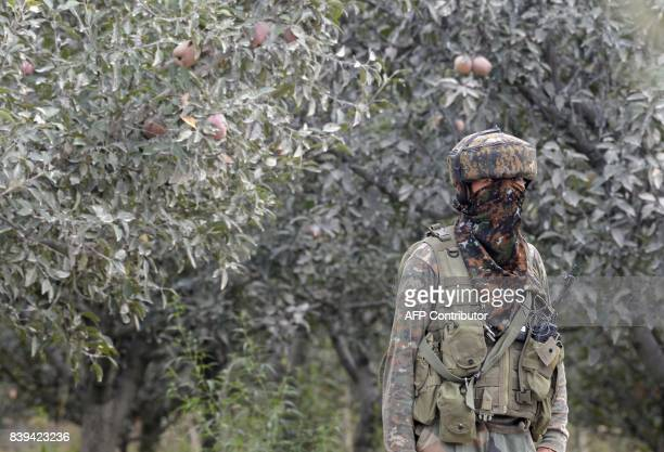 An Indian army soldier stands guard in an apple orchard while a gunfight takes place between militants and government forces in Pulwama south of...
