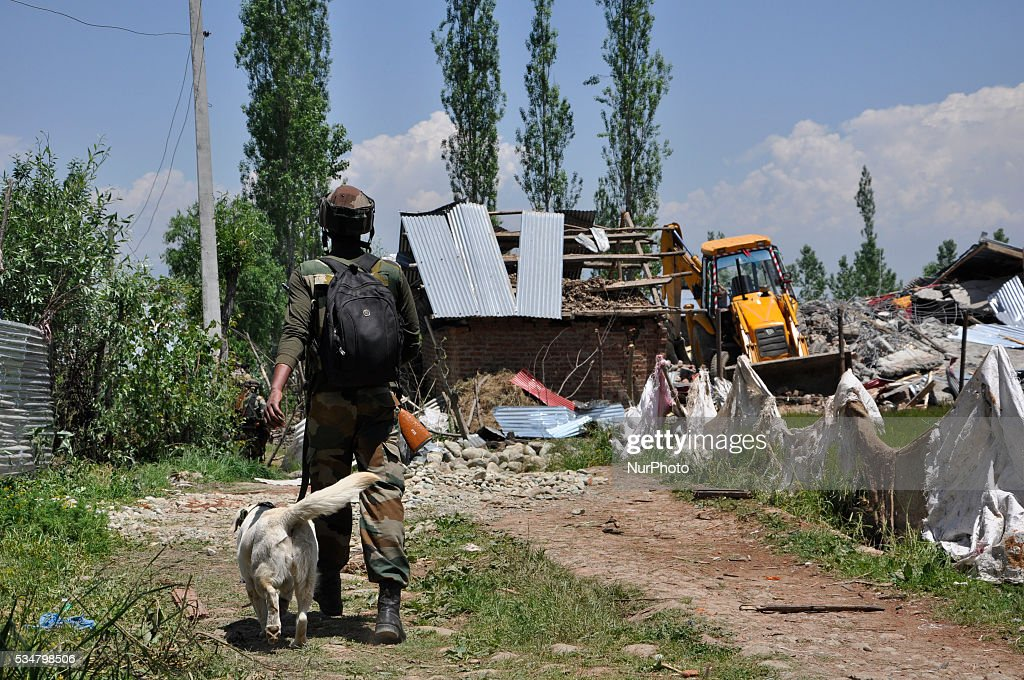 An indian army trooper carries a sniffer dog towards the gunbattle site site in Khonshipora 25 miles west of srinagar on May 27,2016.Two rebels were killed by indian forces during a brief gunfight.