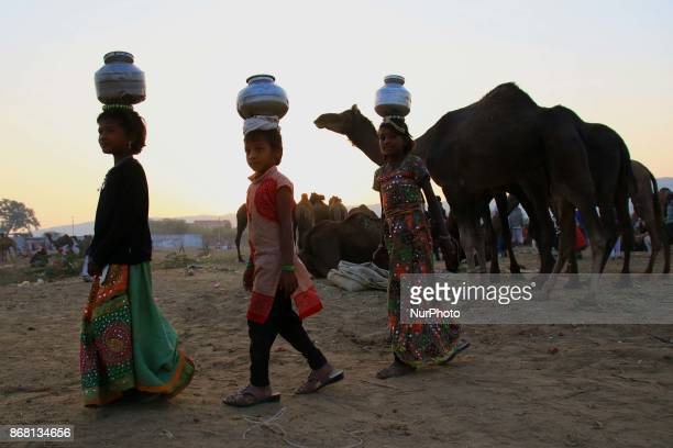 An Indian camels traders gathers to sale their camels at the camel fair grounds in Pushkar Rajasthan India on 30 October 2017 Thousands of livestock...