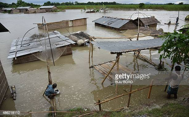 An Indian child fishes in the flood waters at the floodaffected Gagalmari village in Morigoan district of northeastern Assam state on September 2...