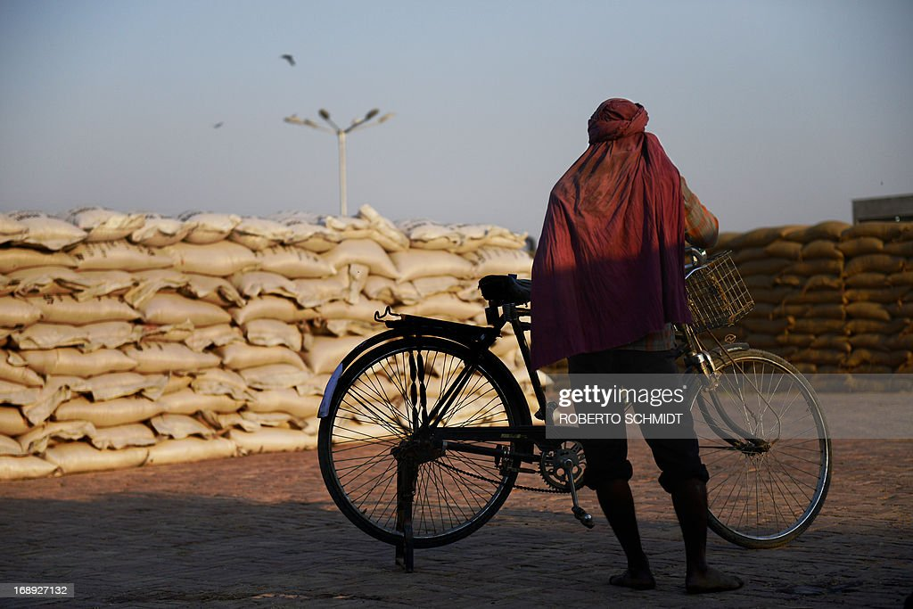 An Indian daily wage labourer stands next to a bicycle as he takes a short break from loading a truck with 50 kilo sacks of wheat at a grain distribution point on the outskirts of Amristar on May 16, 2013. This years wheat harvest is expected to be more bountiful than last year, India's Agriculture Ministry said recently. India which is the second largest producer of wheat in the world is expected to produce about 93.6 million metric tons. Some reports estimate that this will mean a decrease in the local price of wheat and a boost in exports due to the large surplus of grain stored.