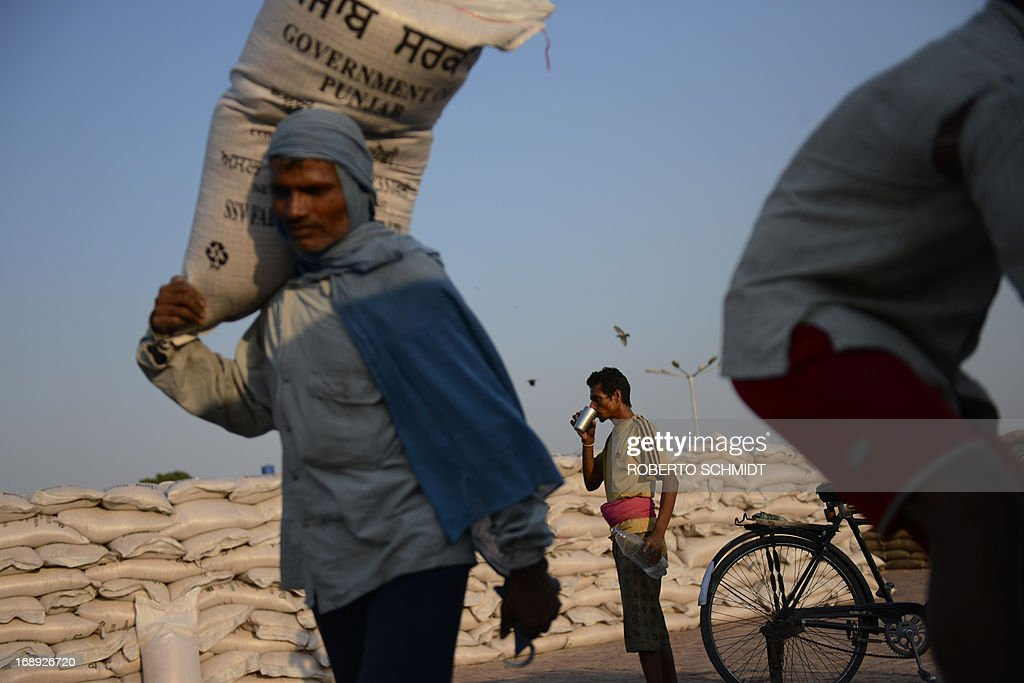 An Indian daily-wage labourer takes a drink as he briefly stops floading 50 kilo sacks of wheat onto a truck at a grain distribution point on the outskirts of Amritsar on May 16, 2013. This years wheat harvest is expected to be more bountiful than last year, India's Agriculture Ministry said recently. India which is the second largest producer of wheat in the world is expected to produce about 93.6 million metric tons. Some reports estimate that this will mean a decrease in the local price of wheat and a boost in exports due to the large surplus of grain stored.