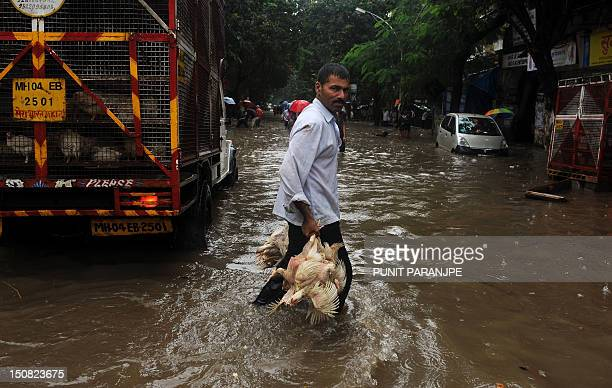 An Indian deliveryman carries chickens in a flooded street after heavy rains in Mumbai on August 27 2012 The monsoon rains across the country has...