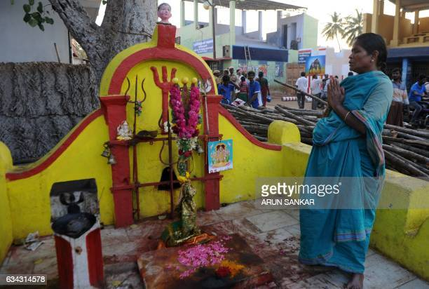 An Indian devotee offers prayers as workers prepare the venue ahead of the bull taming event 'Jallikattu' in Madurai on February 8 2017 / AFP / ARUN...
