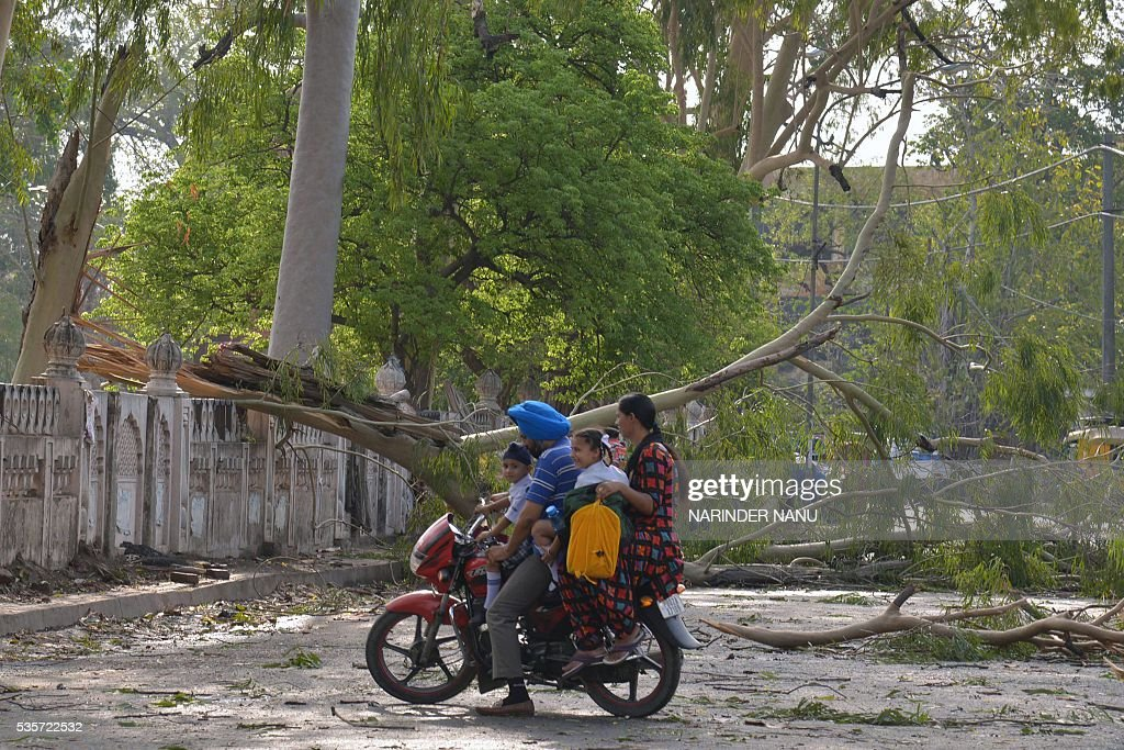 An Indian family on a motorbike turns around after being blocked by a fallen tree after strong winds and heavy rain in Amritsar on May 30, 2016. / AFP / NARINDER