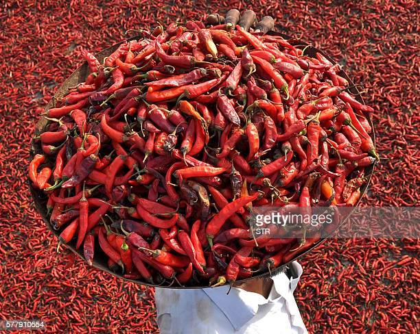 TOPSHOT An Indian farmer carries a tray of red chillies as he walks on a roof where others are drying in the village of Sanour on the outskirts of...