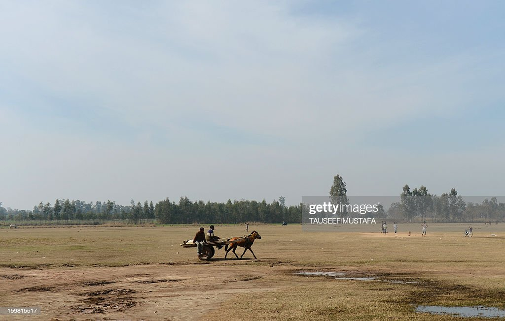 An Indian farmer rides a horse cart near the India-Pakistan border in Suchit-Garh, some 36 kms southwest of Jammu, on January 21, 2013. On both sides of the de facto border in Kashmir, villagers living on one of the world's most dangerous flash points have special reason to fear the return of tension between India and Pakistan. The spike in cross-border firing in Kashmir -- a region claimed wholly by both India and Pakistan -- has seen five soldiers killed in recent days and threatened to unravel a fragile peace process that had begun to make progress. AFP PHOTO/ Tauseef MUSTAFA