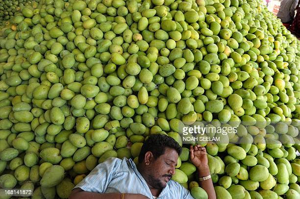 An Indian farmer takes rest after unloading mangoes at the Gaddiannaram Fruit Market on the outskirts of Hyderabad on May 6 2013 The ruling Indian...