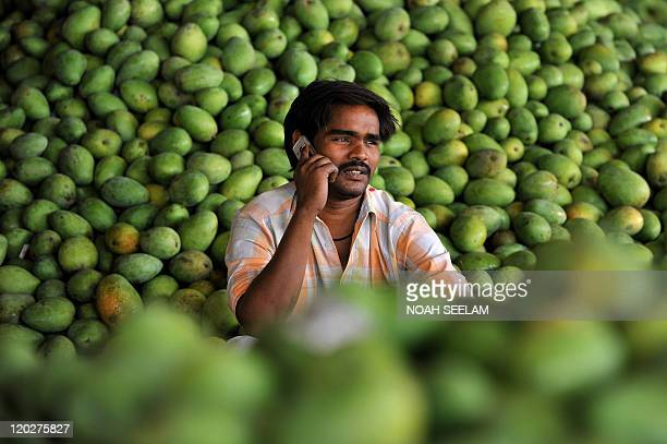 An Indian farmer talks on his mobile phone prior to the auction of mangoes at the Gaddiannaram Fruit Market on the outskirts of Hyderabad on May 12...