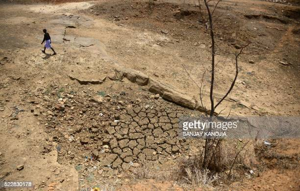 TOPSHOT An Indian farmer walks across the bed of a pond built under an Indian government scheme that has dried out during a water crisis in Katra...