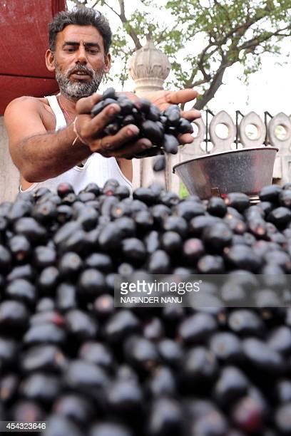 An Indian fruit vendor displays Jamun at a stall in Amritsar on June 29 2010 AFP PHOTO /NARINDER NANU