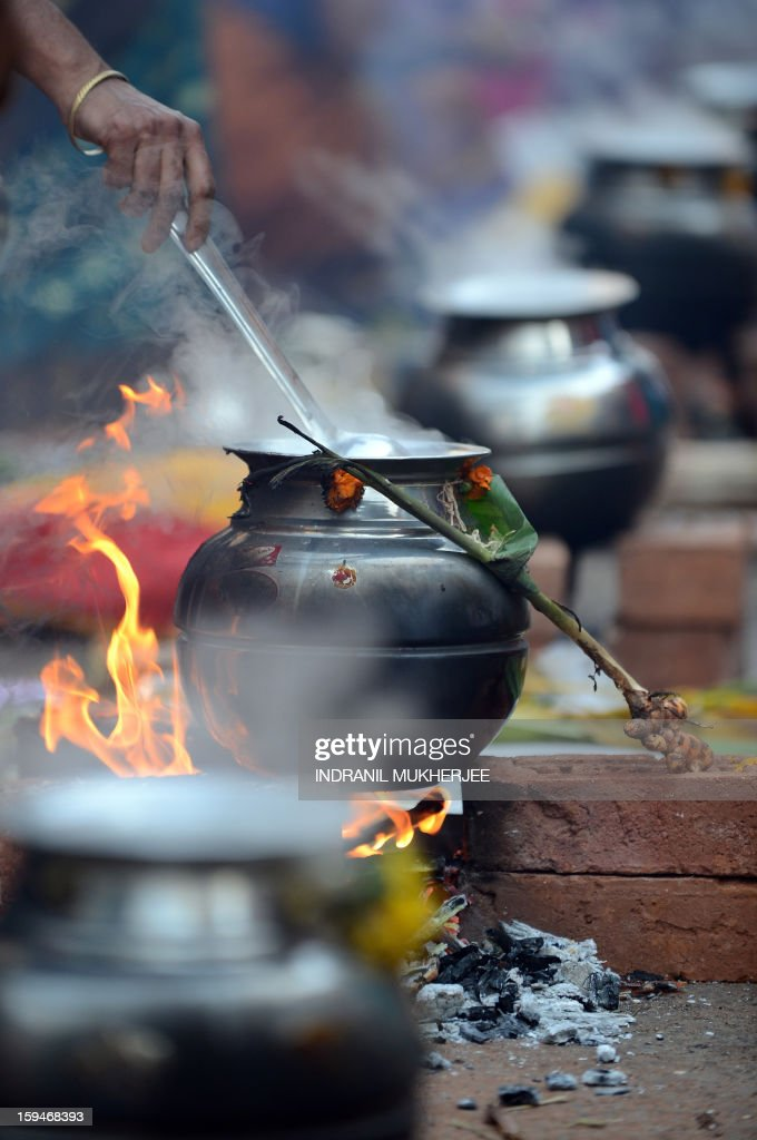 An Indian Hindu devotee cooks a traditional sweet dish during the Pongal festival in Mumbai on January 14, 2013. Pongal is a thanksgiving or harvest festival celebrated by people hailing from the Indian state of Tamil Nadu. Pongal-which coincides with the Hindu festival Makara Sankranthi and is celebrated throughout India as the winter harvest, is usually held from January 13–16.