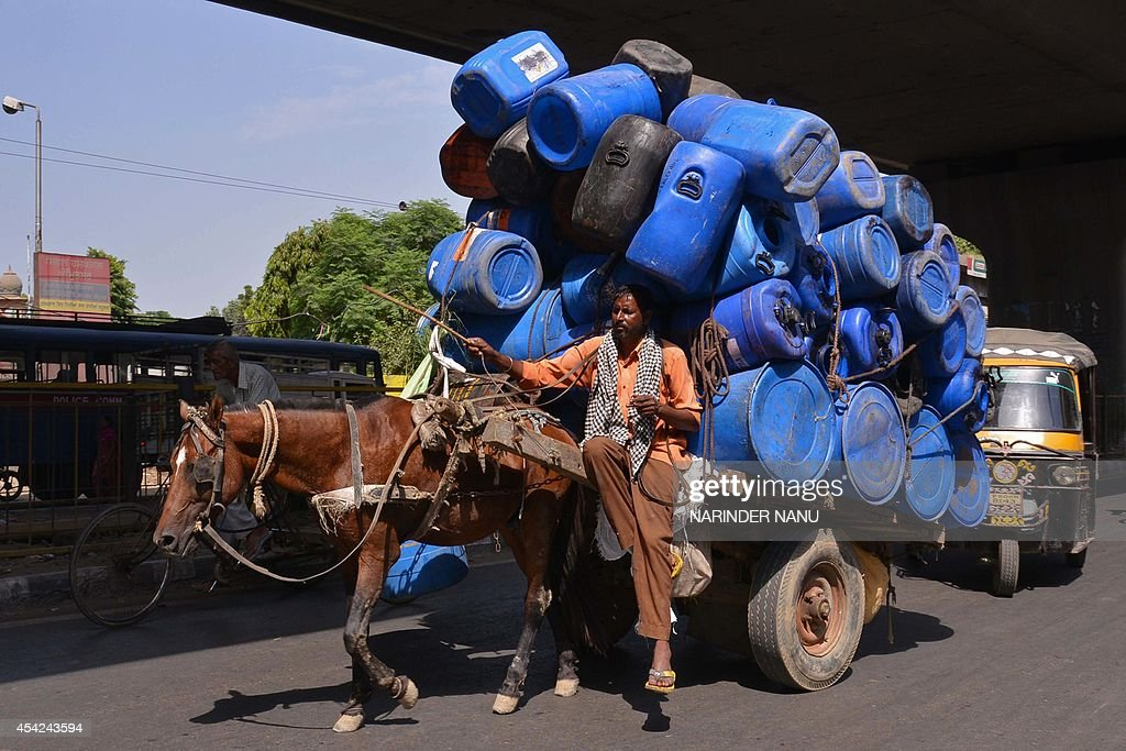 An Indian horse cart driver transports empty plastic drums in Amritsar on August 27, 2014. India's wholesale price inflation hit a five-month low in July, data showed August 14, but steep retail price growth means the central bank is unlikely to cut benchmark interest rates soon. AFP PHOTO/NARINDER NANU
