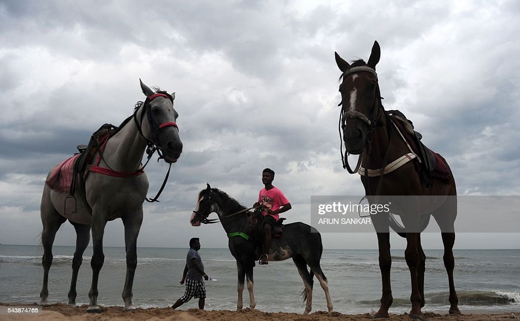 An Indian horseman, who makes a living from giving beachgoers horserides, waits for customers on a beach in Chennai on June 30, 2016. Handlers charge about 100 Indian Rupees (USD1.49) for a short ride along the beach in the capital city of the southern Indian state of Tamil Nadu. / AFP / ARUN