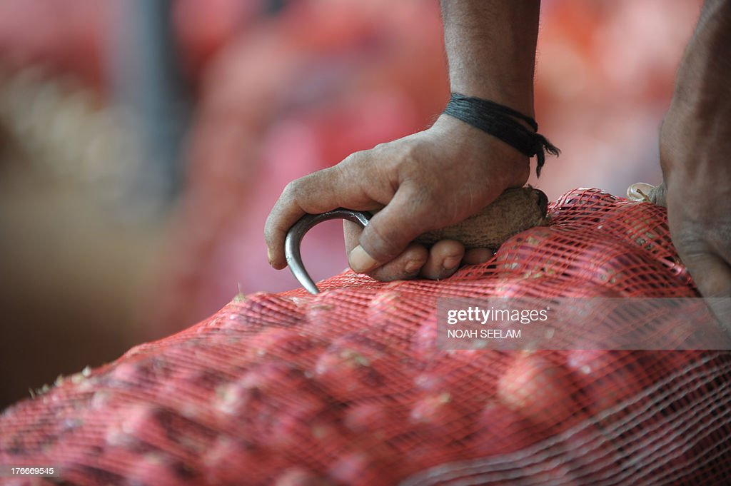 An Indian labourer prepares to carry onion bags towards waiting transport vehicles at a wholesale market yard in Hyderabad on August 17, 2013. India's food inflation rate rose to an annualized 9.5 percent led by a spike in onion prices which were up 34 percent from June. Onion prices have been rising in India as the crop has been hit by excessive rains. AFP PHOTO/Noah SEELAM