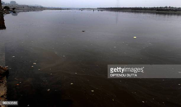 An Indian man prays on the banks of the Ganges river in Kanpur in the northern state of Uttar Pradesh on January 13 2010 For India's devout Hindus...