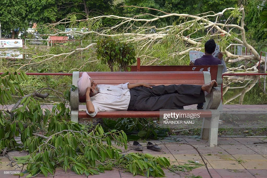An Indian man rests on a bench surrounded bytree branches that fell during strong winds and heavy rain in Amritsar on May 30, 2016 after a heavy downpour of rain. / AFP / NARINDER
