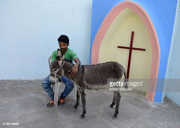 An Indian man sits with his donkey prior to participating in a Palm Sunday procession at Wesley Church in Secunderabad the twin city of Hyderabad on...