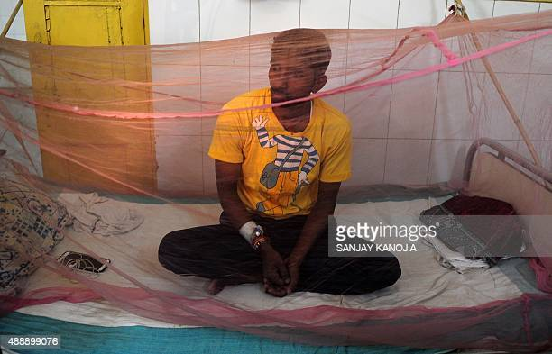 An Indian man suspected to have dengue waits under a mosquito net in a dengue ward of a government hospital in Allahabad on September 18 2015 Dengue...