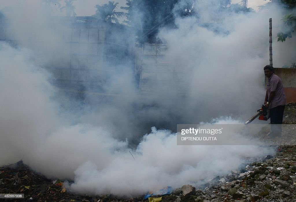 An Indian municipal worker fumigates an area where pigs, thought to attract mosquitoes carrying Japanese encephalitis, are kept at a makeshift housing settlement in Siliguri on July 23, 2014. Outbreaks of encephalitis in India have killed more than 150 people, with health officials on alert fearing the death toll could rise further, state government directors said. Some 102 people have died in West Bengal state from the mosquito-borne virus which affects mainly malnourished children and can cause brain damage and seizures, said medical education director Sushanta Banerjee. Many of the deaths have occurred since the onset of the monsoon season in June when mosquitoes breed in large numbers. AFP PHOTO/ Diptendu DUTTA