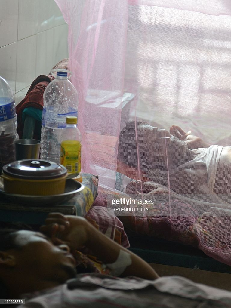 An Indian patient rests under a mosquito net in a ward while being treated for Japanese encephalitis at the North Bengal Medical College Hospital (NBMCH) on the outskirts of Siliguri on July 24, 2014