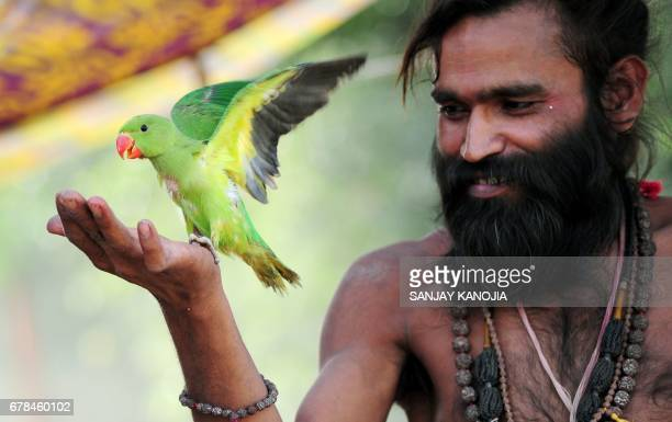 An Indian sadhu plays with a pet parrot in Allahabad on May 4 2017 / AFP PHOTO / Sanjay KANOJIA