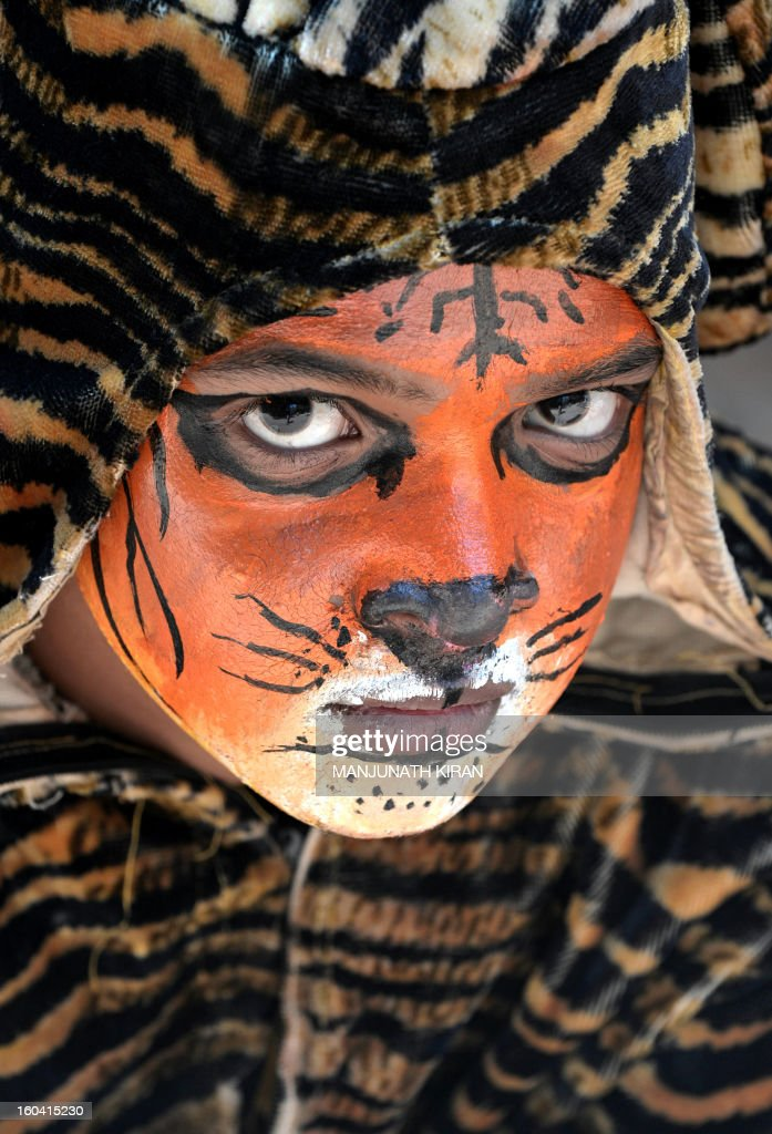 An Indian school child with a painted face takes part in the 'Save Tiger Campaign' organised by the environmental magazine 'Sanctuary Asia' and conservation program 'Kids for Tigers' in Bangalore on January 31, 2013. The tiger census in India for 2012 stated that the total number of tigers in the country is between 1500 and 1800. AFP PHOTO/Manjunath KIRAN